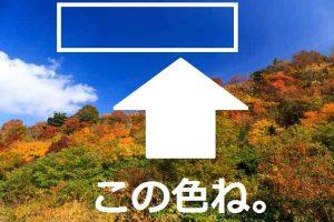 ame853_kurikomayama_tp_v1